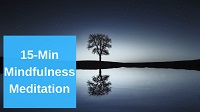 15 Minute Mindfulness Meditation Video Link